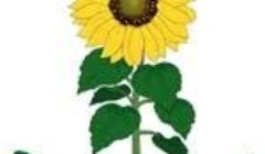 gh hort logo