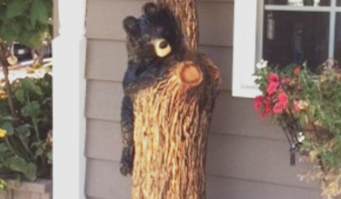 Bear carvings stolen on honey harbour rd. muskoka today