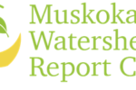 watershed report card