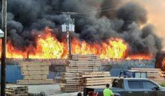 bb fire wood