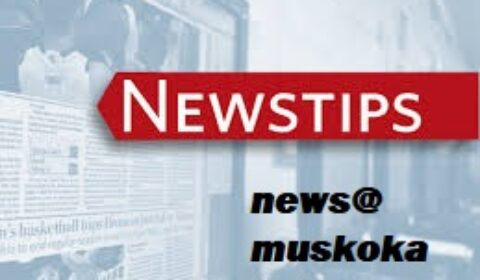 news tips logo