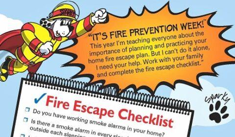 fire check list 2